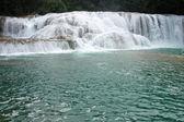 Waterfall Agua Azul Mexico — Stock Photo