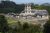 Panorama of Palenque — Stock Photo