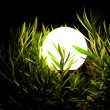 Night lantern in a grass 2 - Stock Photo