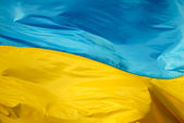 Flag of the Ukraine — Stok fotoğraf