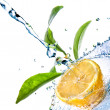 Stock Photo: Water drops on lemon with green leaves