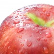 Red apple with water drops - Stock Photo