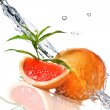 Water splash on grapefruit with mint - Stock Photo