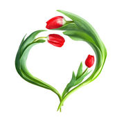 Heart from red tulips isolated on white — Stock Photo