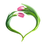 Heart from purple tulips — Stock Photo