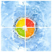 Mix of citrus dropped into water — Stock Photo