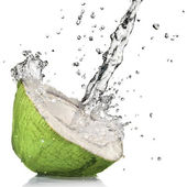 Green coconut with water splash — Stock Photo