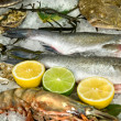 Fresh frozen fish with oysters, lobster and lemons in ice — Stock Photo