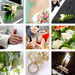 Color wedding photo set — Stockfoto #3374084
