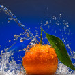Tangerine with green leaves and water splash — ストック写真
