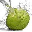 Green coconut with water splash — Stock Photo #3379113