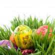 Color easter eggs in nest from green grass — ストック写真