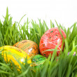 Color easter eggs in nest from green grass — Stock Photo #3379606