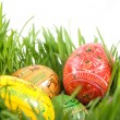 Color easter eggs in nest from green grass - Stock Photo