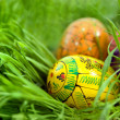 Foto Stock: Color easter eggs in nest from green grass