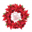 Christmas wreath from poinsettia — Stock Photo #3379866