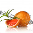 Water splash on grapefruit with mint — Stock Photo #3380068