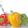 Red, yellow and green pepper with water splash — Stockfoto