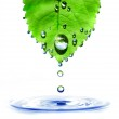 Green leaf with water drops and splash — Stock Photo