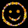 Decorative smile symbol from color flowers — Stock Photo
