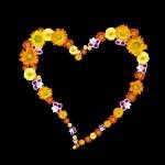 symbol dekorativní srdce z barevné květy — Stock fotografie