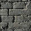 Grunge old bricks wall texture - Photo