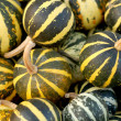Background from small pumpkins — Stock Photo