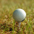 Golf ball in grass — Stock Photo #3385267