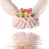 Hands holding gift with reflection — 图库照片