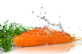 Fresh water splash on carrot — Stok fotoğraf