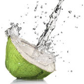 Cocco verde con acqua splash — Foto Stock