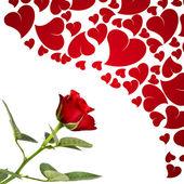 红玫瑰和恋人的心 — 图库照片