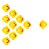 Rubber yellow ducks isolated on white — Stockfoto