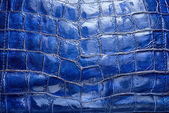 Luxury blue leather texture — Stock Photo