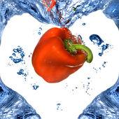 Peperone rosso a forma di cuore da acqua blu isolato su bianco — Foto Stock