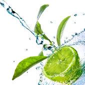 Gotas de agua sobre la cal con hojas verdes aisladas en blanco — Foto de Stock