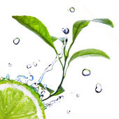 Water drops on lime with green leaves isolated on whit — Stock Photo
