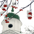 Brunches of ashberry in snow against the church - Stock Photo