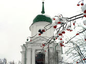 Brunches of ashberry in snow against the church — Stock Photo