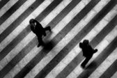 Busy crosswalk scene on the stripped floor — Stock Photo