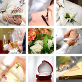 Color wedding photos set — Stockfoto