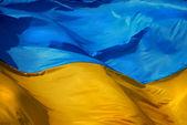Drapeau de l'ukraine — Photo