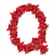 Stock Photo: Letter from red christmas flowers isolated on white