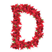 Letter from red christmas flowers isolated on whit — Stock Photo