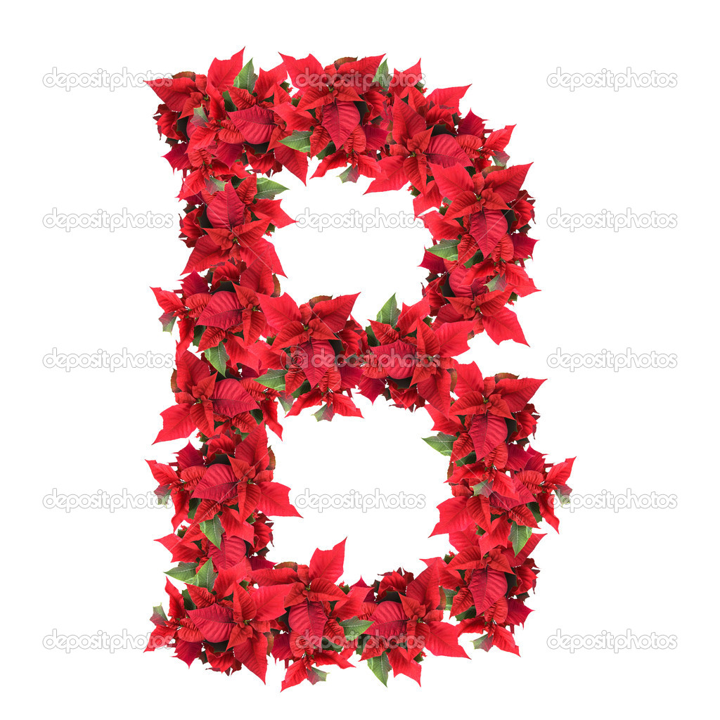 Letter from red christmas flowers isolated on white — Stock Photo #3471712