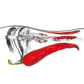 Red pepper dropped into water with splash isolated on white — Stockfoto
