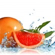 Water splash on grapefruit with mint isolated on white — Stock Photo #3627193