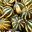Background from small pumpkins - Stock Photo