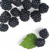 Blackberry with green leaf isolated on white - Stock Photo