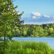 Green meadow and lake — Stockfoto